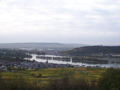 ruedesheim-von-oben.jpg
