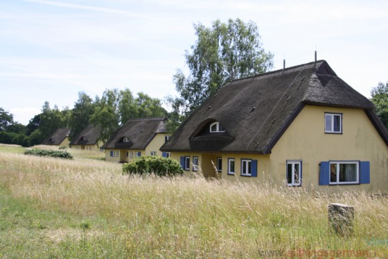 The houses on Vilm, once the holiday homes of the GDR leaders, now home to nature conservationists.