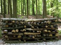A celtic funeral pile