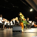 The grammar school symphony orchestra