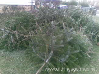 Christmas Trees waiting to be collected