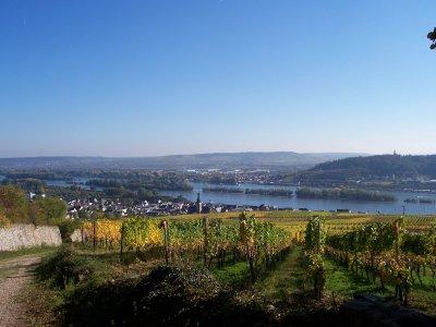 ruedesheim-final.jpg
