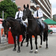 Mounted police at the Hessentag