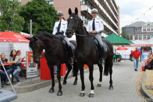 Lara (l) and Filou (r) with their riders at the Hessentag in Oberursel