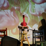 Toll im Quadrat – not 'just' a Flamenco Revue