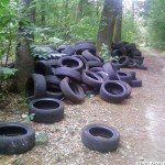 Tyres that have been dumped illegally in the Käsbachtal (Photo: Stadt Oberursel)