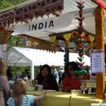 FIS Worldfest 2013 - India