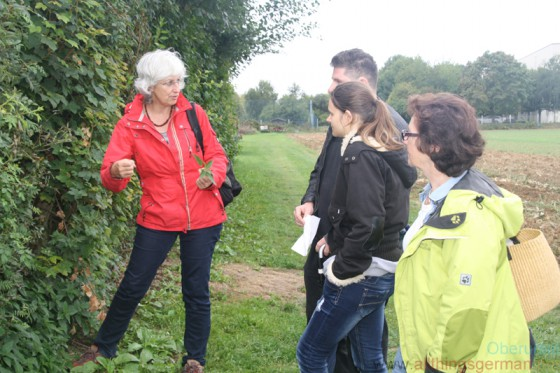 Regina Ebert explained how to pick and eat stinging nettles without hurting yourself