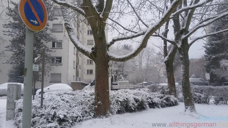 Snow in Im Rosengärtchen on 10th January 2017