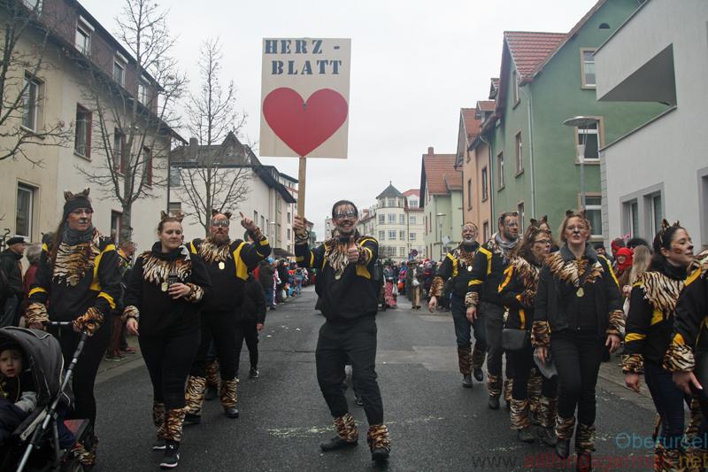 Carnival 2019: Tanzgarde 2008 e.V. Steinbach - Taunus-Karnevalszug 2019